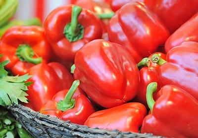 Feb. 22, Produce Market Report