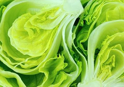 Feb. Produce Market Report